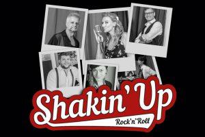 Shakin Up Rock n Roll Band Logo